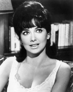 suzanne pleshette smokingsuzanne pleshette photo, suzanne pleshette wiki, suzanne pleshette images, suzanne pleshette quotes, suzanne pleshette voice acting, suzanne pleshette 2008, suzanne pleshette the birds, suzanne pleshette death, suzanne pleshette imdb, suzanne pleshette funeral, suzanne pleshette tommy gallagher, suzanne pleshette troy donahue, suzanne pleshette measurements, suzanne pleshette net worth, suzanne pleshette feet, suzanne pleshette voice, suzanne pleshette columbo, suzanne pleshette smoking, suzanne pleshette obituary